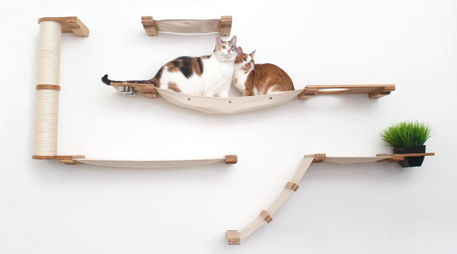 catastrophic creations wall ounted cat furniture